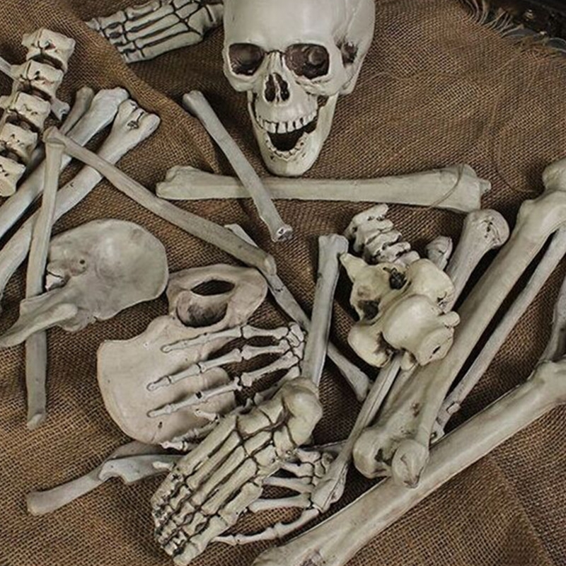 28PCS Adult Skeleton Bone Grave Skull Halloween Haunted House Decoration Props